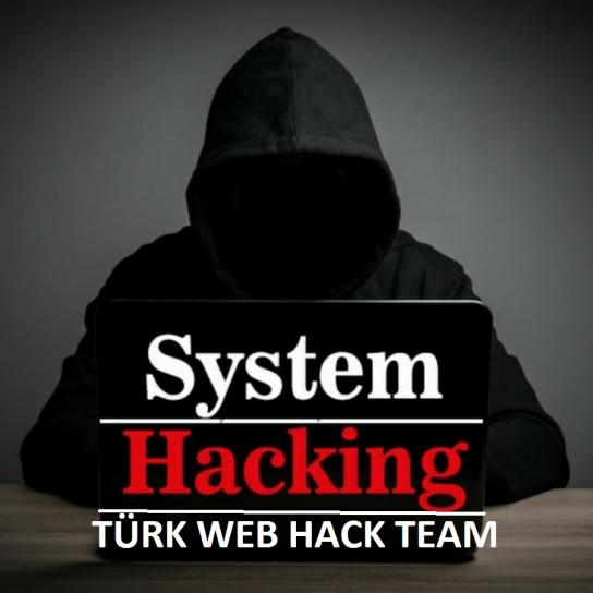 image hacking.jpg (94.5kB)
